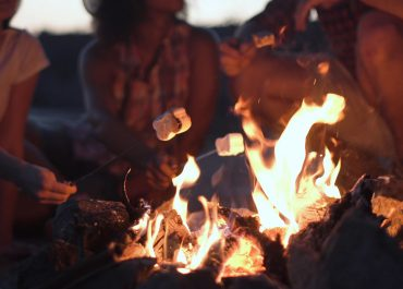 Crop view of people sitting around campfire and grilling marshmallows on sticks in twilight.